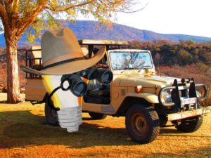 customer safari