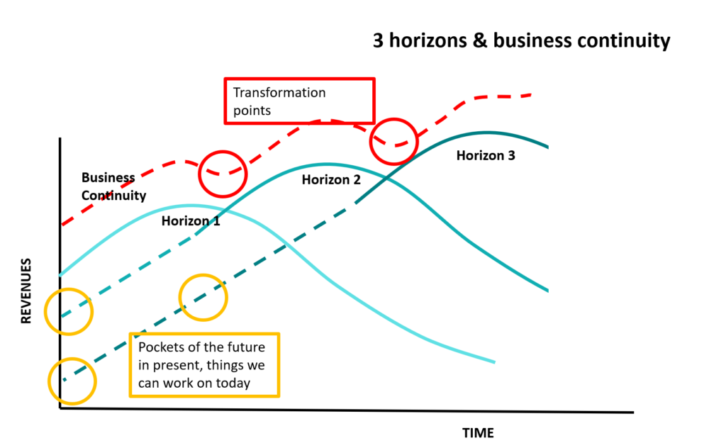 3 horizons and business continuity